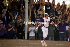 Lubbock Cooper-Wylie baseball playoff