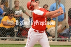 Albany-Hale Center baseball playoff (Game 2)