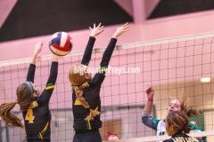 Dublin at Bangs volleyball