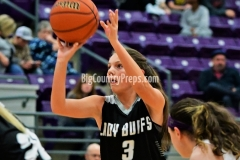 Forsan at Roscoe girls hoops 12-14-18