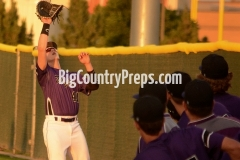 Wylie-Lubbock Cooper baseball playoff